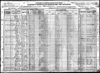 1920 Census - Somervell County, Texas